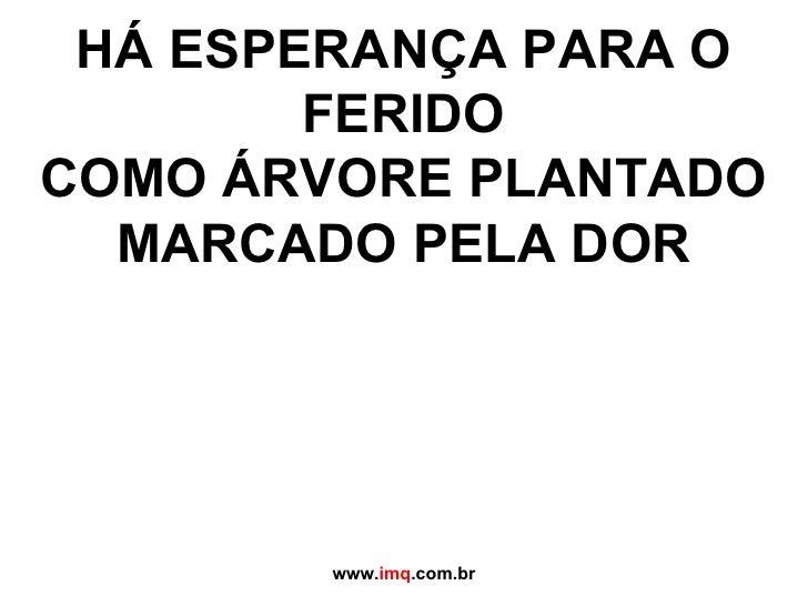 HÁ ESPERANÇA PARA O FERIDO COMO ÁRVORE PLANTADO MARCADO PELA DOR www. imq .com.br