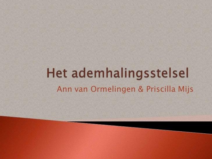 Ann van Ormelingen & Priscilla Mijs