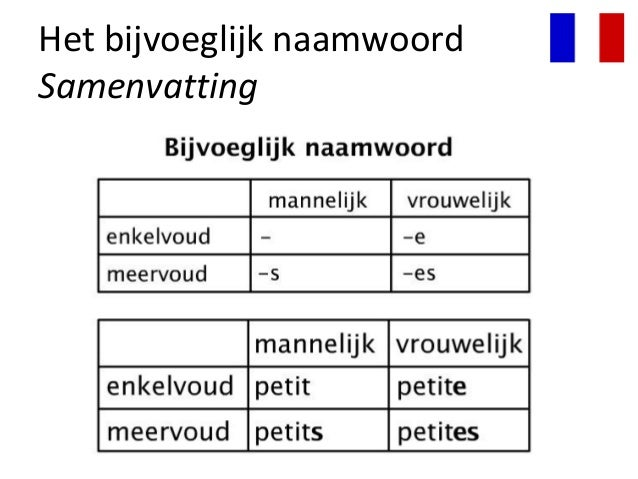 Afbeeldingsresultaat voor bijvoeglijk naamwoord frans
