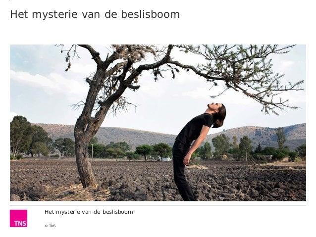 Het mysterie van de beslisboom  Het mysterie van de beslisboom © TNS