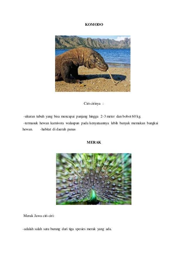 97 Gambar Hewan Langka Beserta Ciri-cirinya HD Terbaru