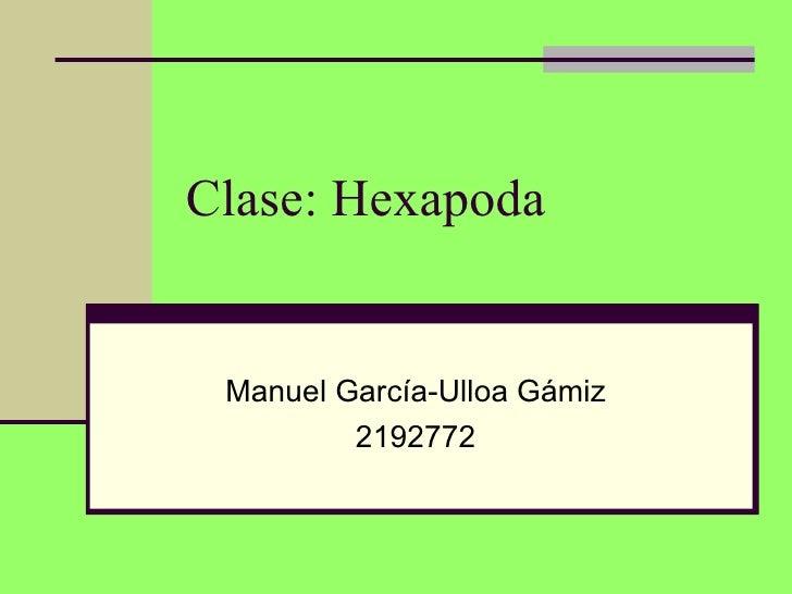 Clase: Hexapoda Manuel García-Ulloa Gámiz         2192772