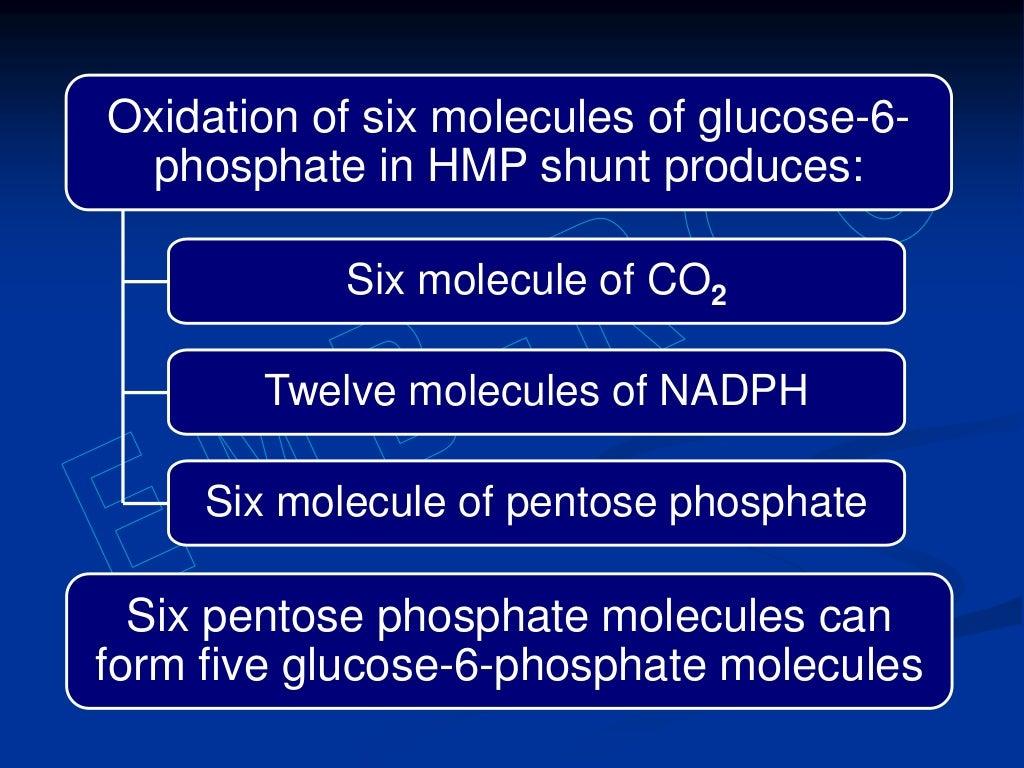 Hexose monophosphate shunt page 12