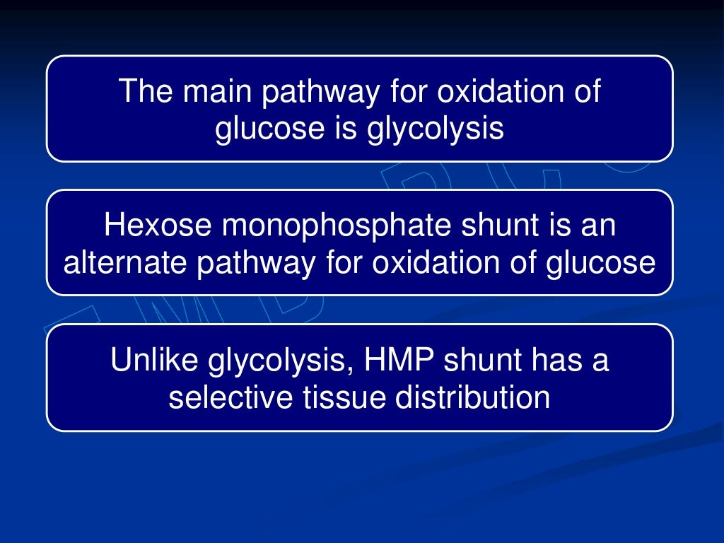 Hexose monophosphate shunt page 2