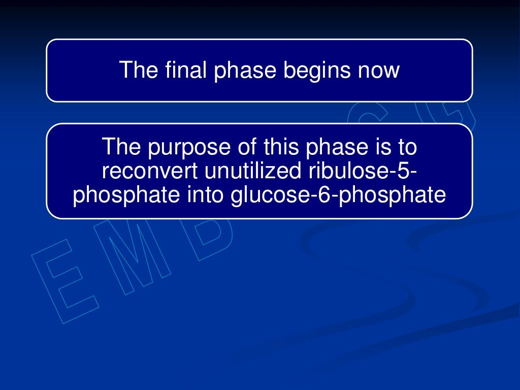 Hexose monophosphate shunt page 22