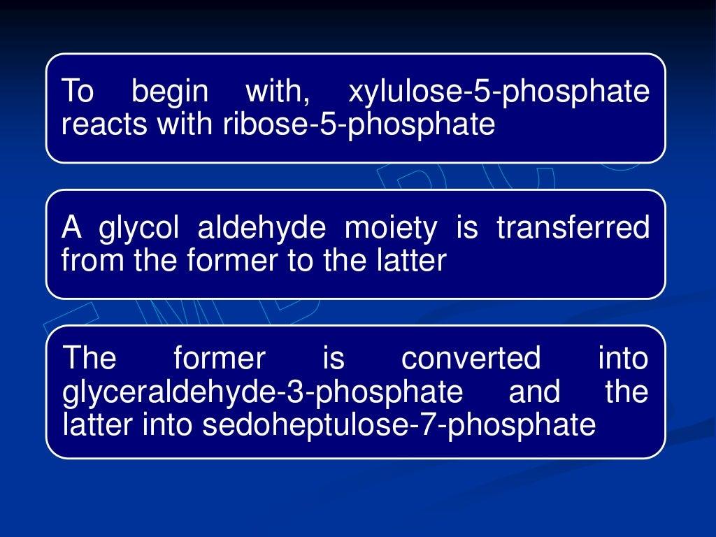 Hexose monophosphate shunt page 24