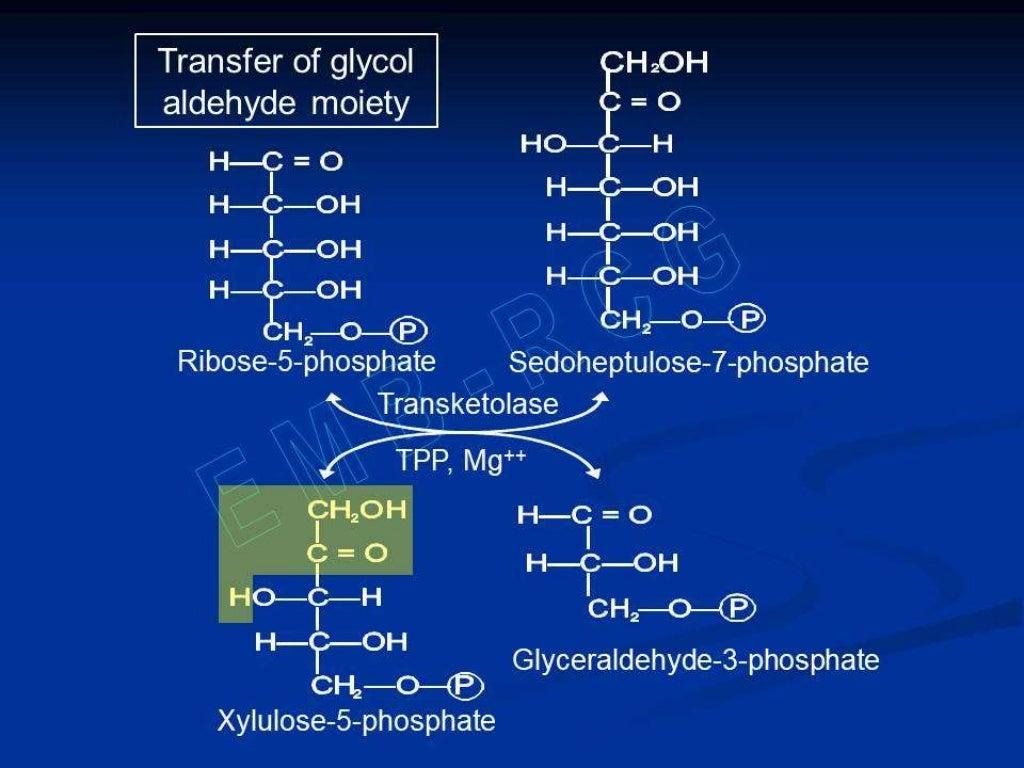 Hexose monophosphate shunt page 25
