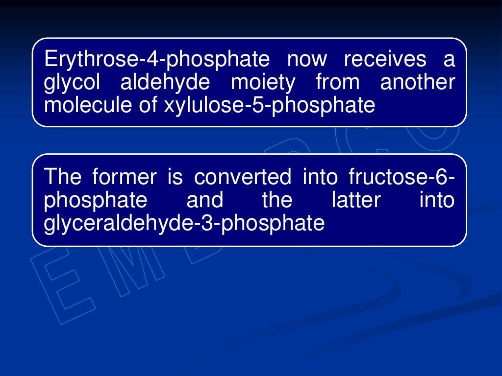 Hexose monophosphate shunt page 28