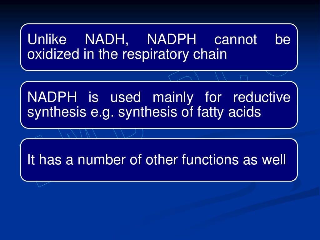 Hexose monophosphate shunt page 7