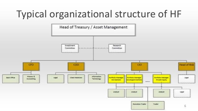 Typical organizational structure of HF  6