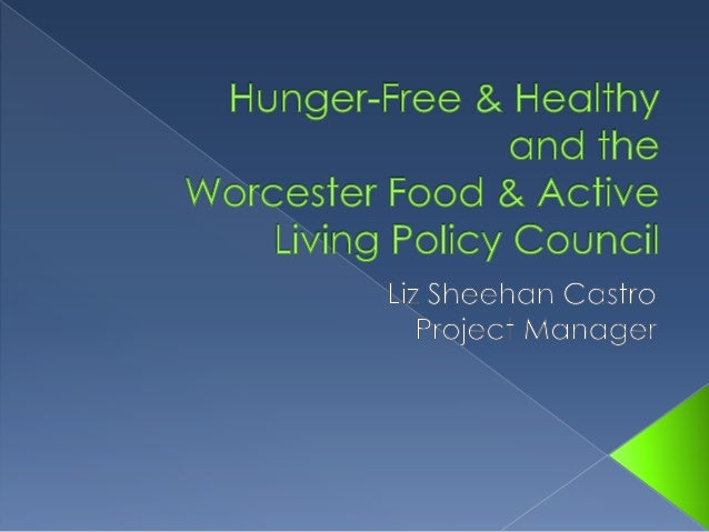  Origins: Summer Feeding Project Success  Funder: Health Foundation of Central MA  Timeline: 2007-2012  Purpose: Hunge...
