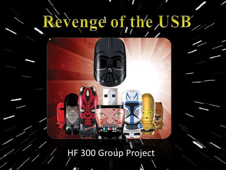 HF 300 Group Project