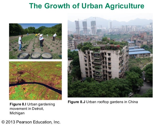 Hg 6e ch 08 lecture for China garden restaurant detroit mi