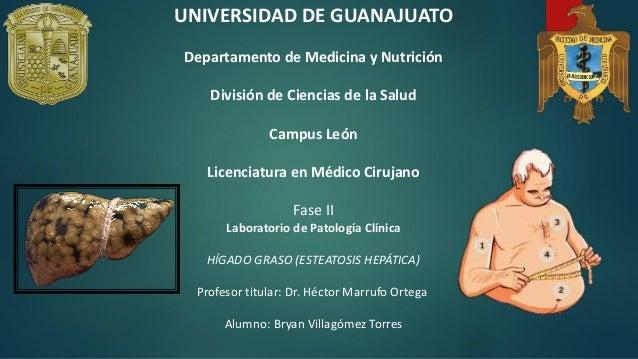 UNIVERSIDAD DE GUANAJUATO Departamento de Medicina y Nutrición División de Ciencias de la Salud Campus León Licenciatura e...