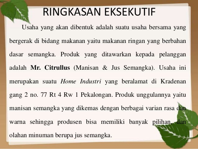 Business Plan Mr Citrullus