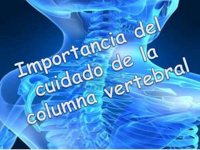 La columna vertebral es una estructura ósea muy importante porque nos permite mantener el equilibrio y movernos, además, p...