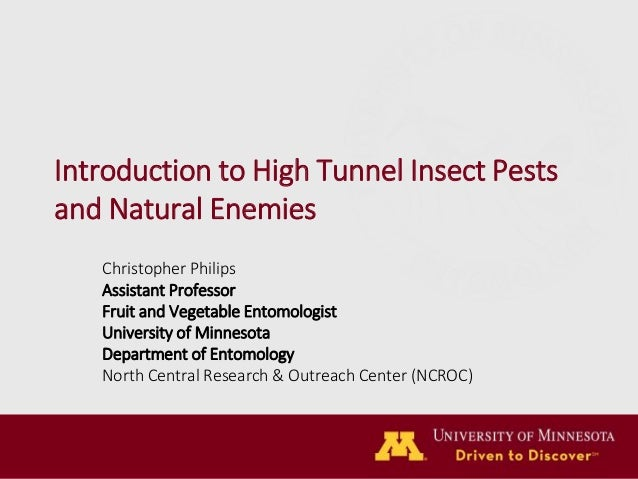 Introduction to High Tunnel Insect Pests and Natural Enemies Christopher Philips Assistant Professor Fruit and Vegetable E...