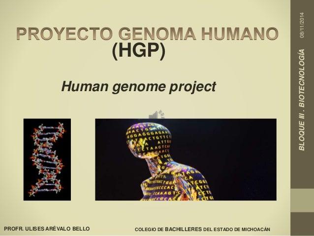 BLOQUE III . BIOTECNOLOGÍA 08/11/2014  PROFR. ULISES ARÉVALO BELLO  (HGP)  Human genome project  COLEGIO DE BACHILLERES DE...