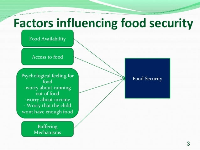 International Conference On Food Security And Nutrition