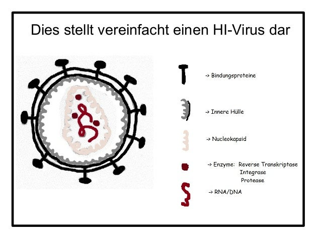 pdf some aspects of chromosome