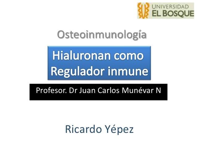OsteoinmunologíaProfesor. Dr Juan Carlos Munévar N       Ricardo Yépez
