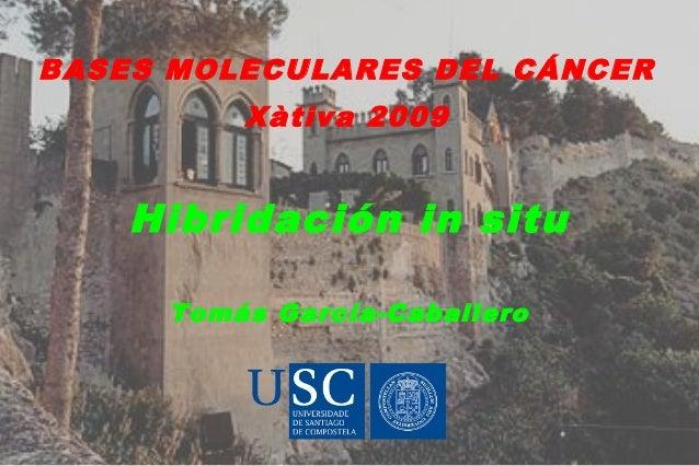 Hibridación in situ Tomás García-Caballero BASES MOLECULARES DEL CÁNCER Xàtiva 2009