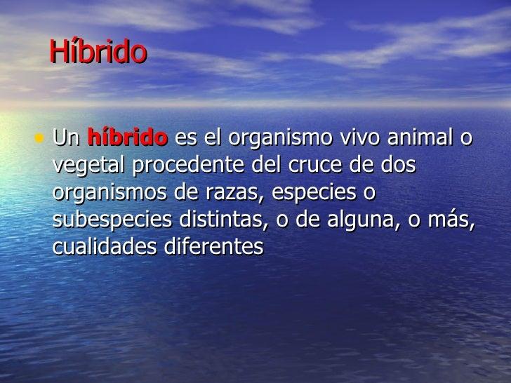 Híbrido  <ul><li>Un  híbrido  es el organismo vivo animal o vegetal procedente del cruce de dos organismos de razas, espec...
