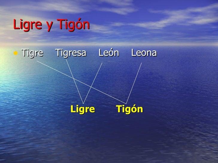 Ligre y Tigón <ul><li>Tigre  Tigresa  León  Leona </li></ul><ul><li>Ligre   Tigón </li></ul>