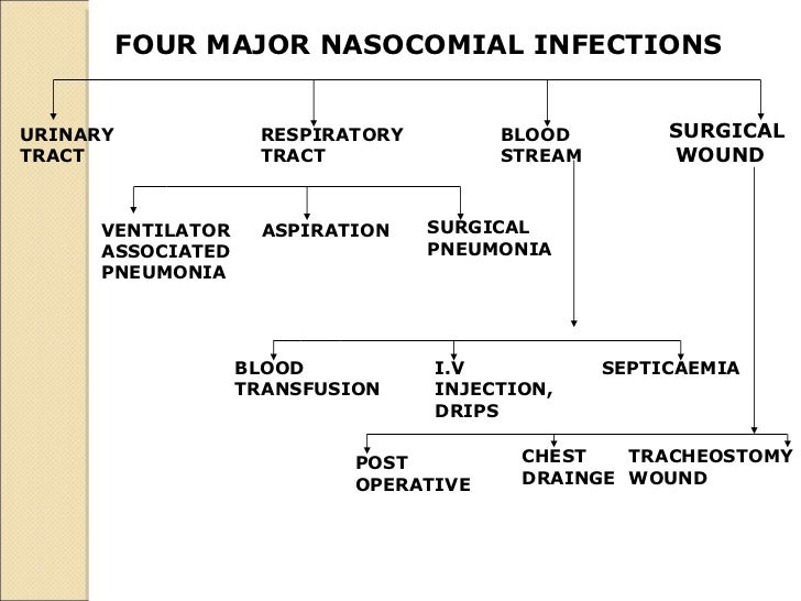 FOUR MAJOR NASOCOMIAL INFECTIONS   URINARY  TRACT   RESPIRATORY  TRACT  BLOOD  STREAM   SURGICAL WOUND VENTILATOR  ASSOCIA...