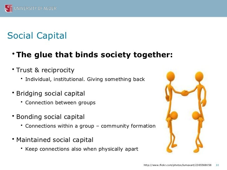 Social Capital And The Networked Public Sphere