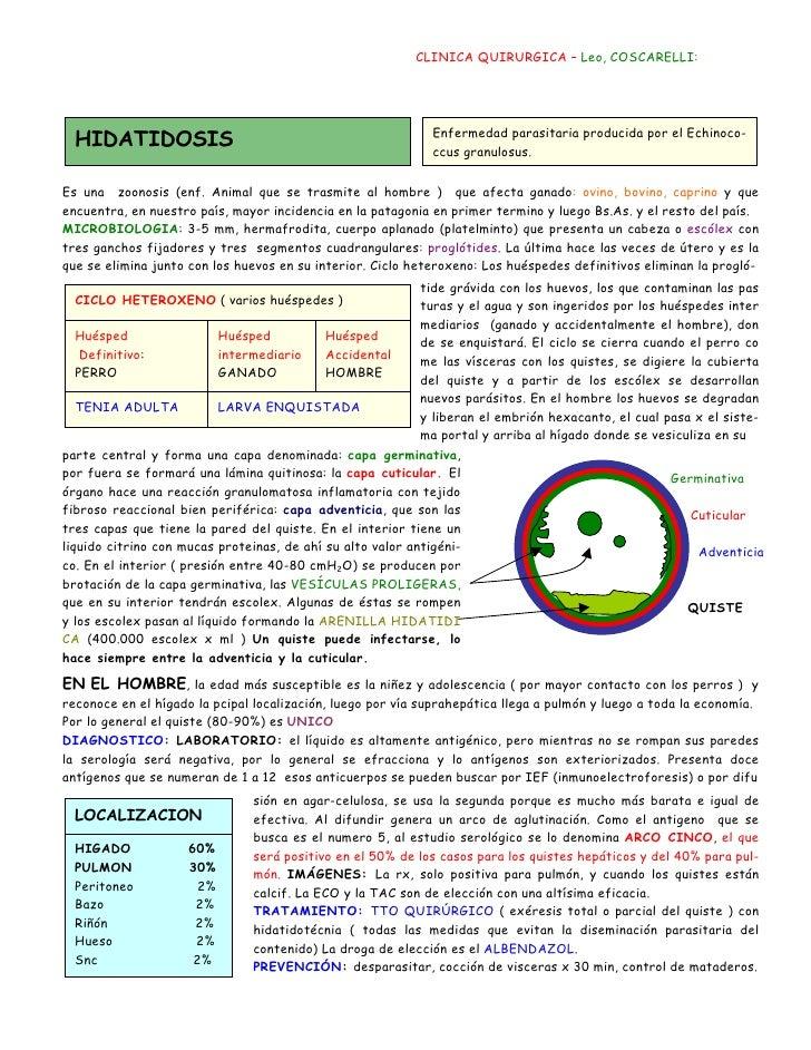 CLINICA QUIRURGICA – Leo, COSCARELLI:  HIDATIDOSIS                                                Enfermedad parasitaria p...