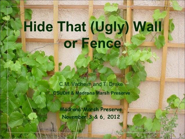 Modren Garden Ideas To Hide Fence Build A Cover For Window Ac Unit