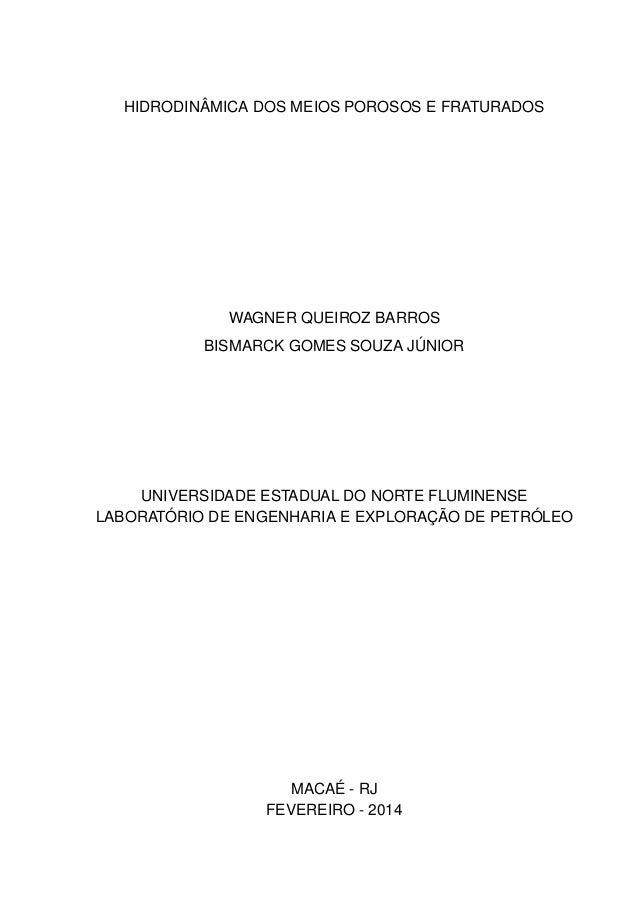 HIDRODINÂMICA DOS MEIOS POROSOS E FRATURADOS  WAGNER QUEIROZ BARROS BISMARCK GOMES SOUZA JÚNIOR  UNIVERSIDADE ESTADUAL DO ...