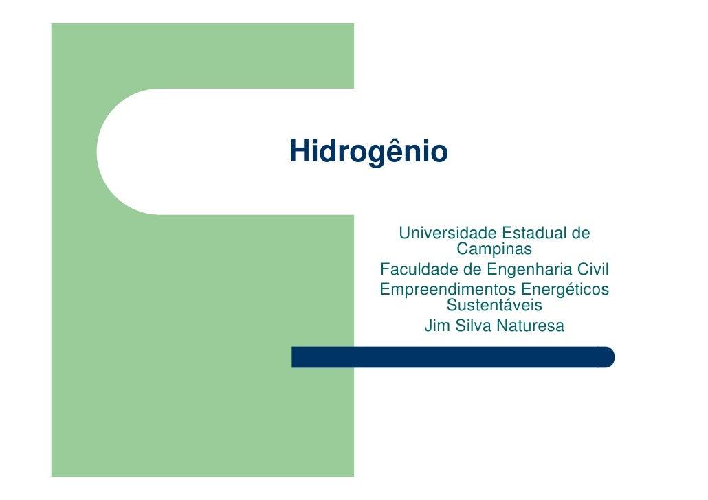 Hidrogênio         Universidade Estadual de               Campinas      Faculdade de Engenharia Civil      Empreendimentos...