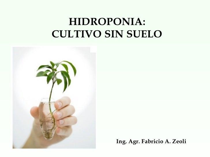 HIDROPONIA:  CULTIVO SIN SUELO  Ing. Agr. Fabricio A. Zeoli