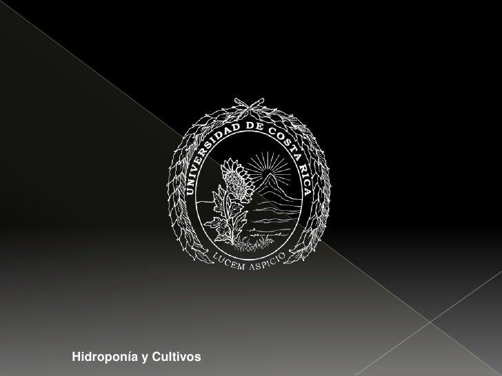Hidroponía y Cultivos<br />