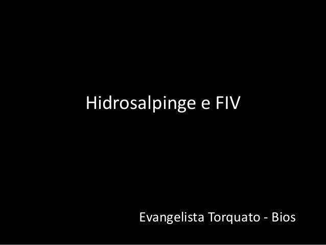 Hidrosalpinge e FIV  Evangelista Torquato - Bios