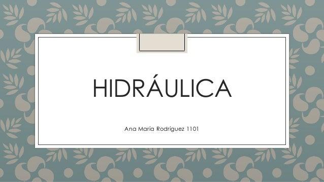 HIDRÁULICA Ana María Rodríguez 1101