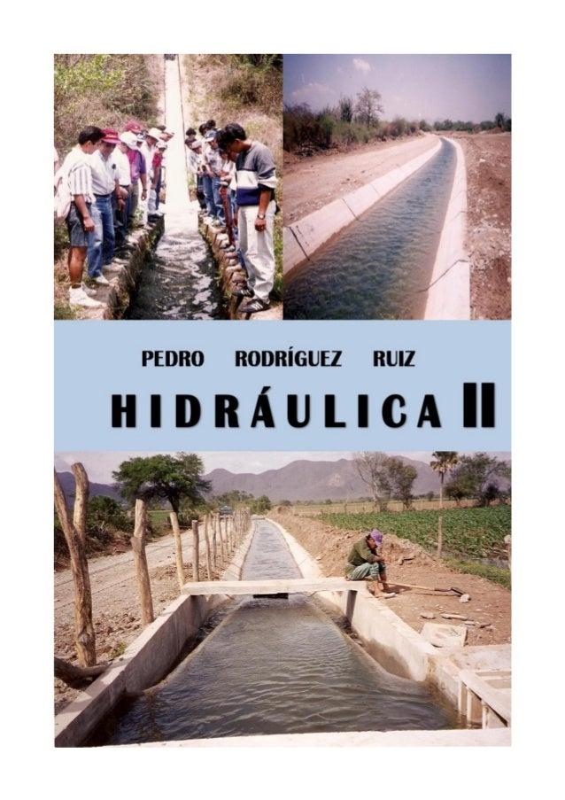 Pedro Rodríguez Ruiz  HIDRÁULICA II  HIDRÁULICA de CANALES  PEDRO RODRÍGUEZ RUIZ  Agosto 2008
