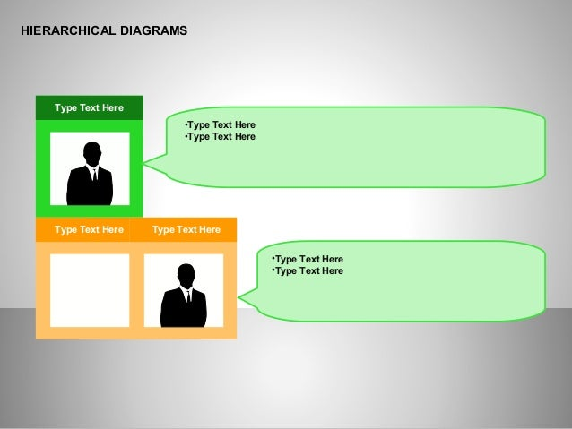 HIERARCHICAL DIAGRAMS Type Text Here Type Text Here Type Text Here •Type Text Here •Type Text Here •Type Text Here •Type T...