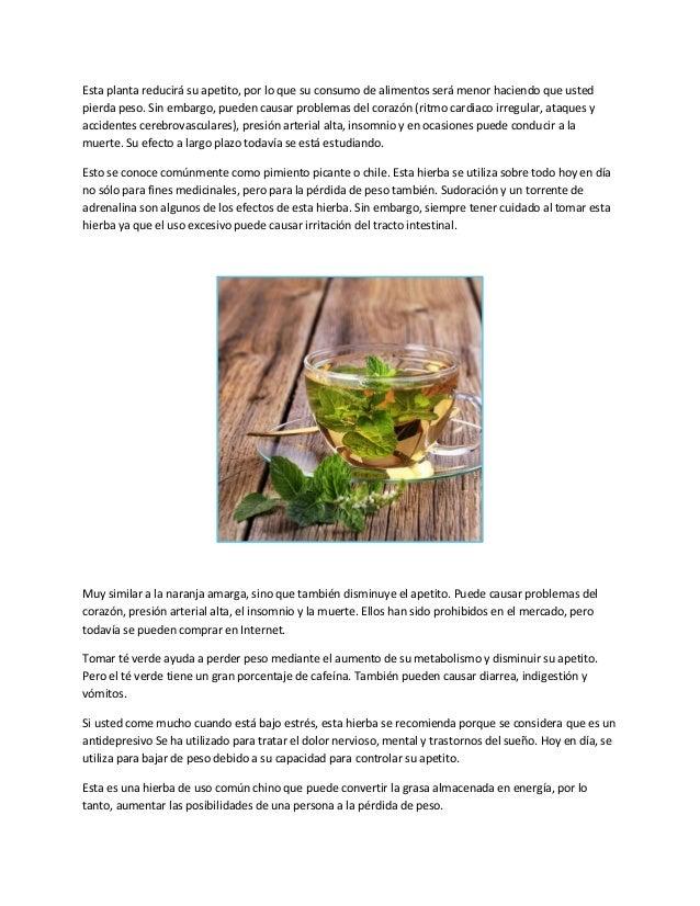 Esta planta reducirá su apetito, por lo que su consumo de alimentos será menor haciendo que ustedpierda peso. Sin embargo,...