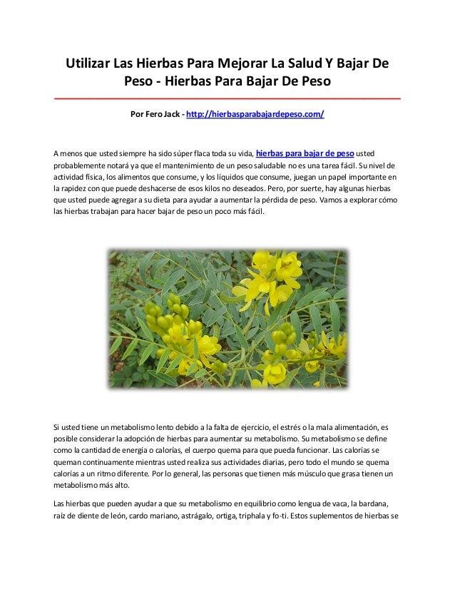 Utilizar Las Hierbas Para Mejorar La Salud Y Bajar DePeso - Hierbas Para Bajar De Peso____________________________________...