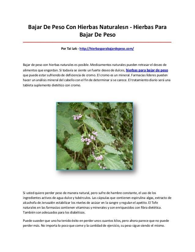 Hierbas para bajar de peso for Plantas para bajar de peso