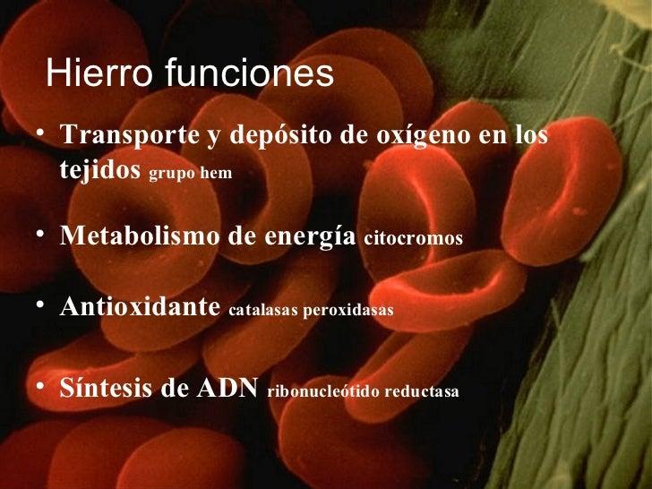 Hierro funciones <ul><li>Transporte y depósito de oxígeno en los tejidos  grupo hem </li></ul><ul><li>Metabolismo de energ...