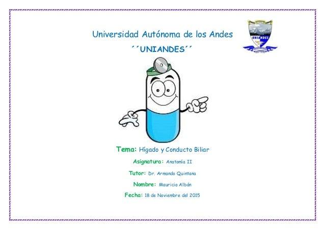 Universidad Autónoma de los Andes ´´UNIANDES´´ Tema: Hígado y Conducto Biliar Asignatura: Anatomía II Tutor: Dr. Armando Q...