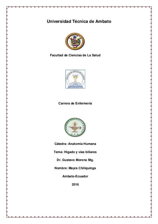 Universidad Técnica de Ambato Facultad de Ciencias de La Salud Carrera de Enfermería Cátedra: Anatomía Humana Tema: Hígado...