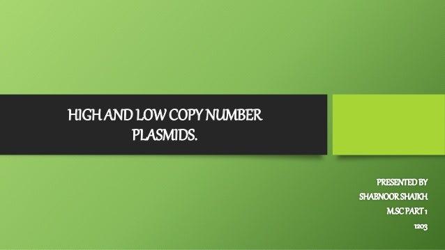 HIGH AND LOW COPY NUMBER PLASMIDS. PRESENTEDBY SHABNOORSHAIKH M.SCPART 1 1203