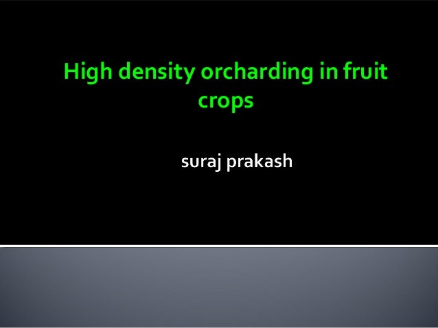 High density orcharding in fruit crops