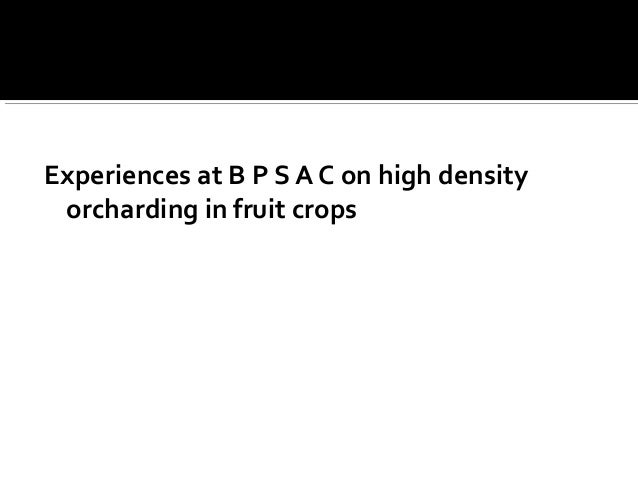Experiences at B P S A C on high density orcharding in fruit crops