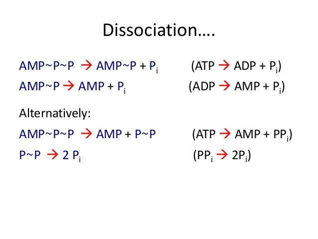 an introduction to the phosphate compound adenosine triphosphate Adenosine triphosphate  the structure of atp has an ordered carbon compound as a  if you remove just one of these phosphate groups from.